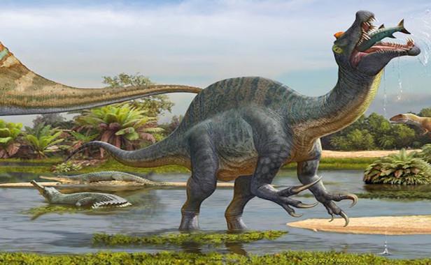 Illustration d'un Spinosaurus. / Ph. Sergey Krasovskiy