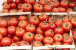 Côtes-d'Armor: Des tomates françaises provenaient en réalité du Maroc