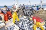 Accord de pêche : «Un long chemin reste à parcourir», reconnait une eurodéputée espagnole