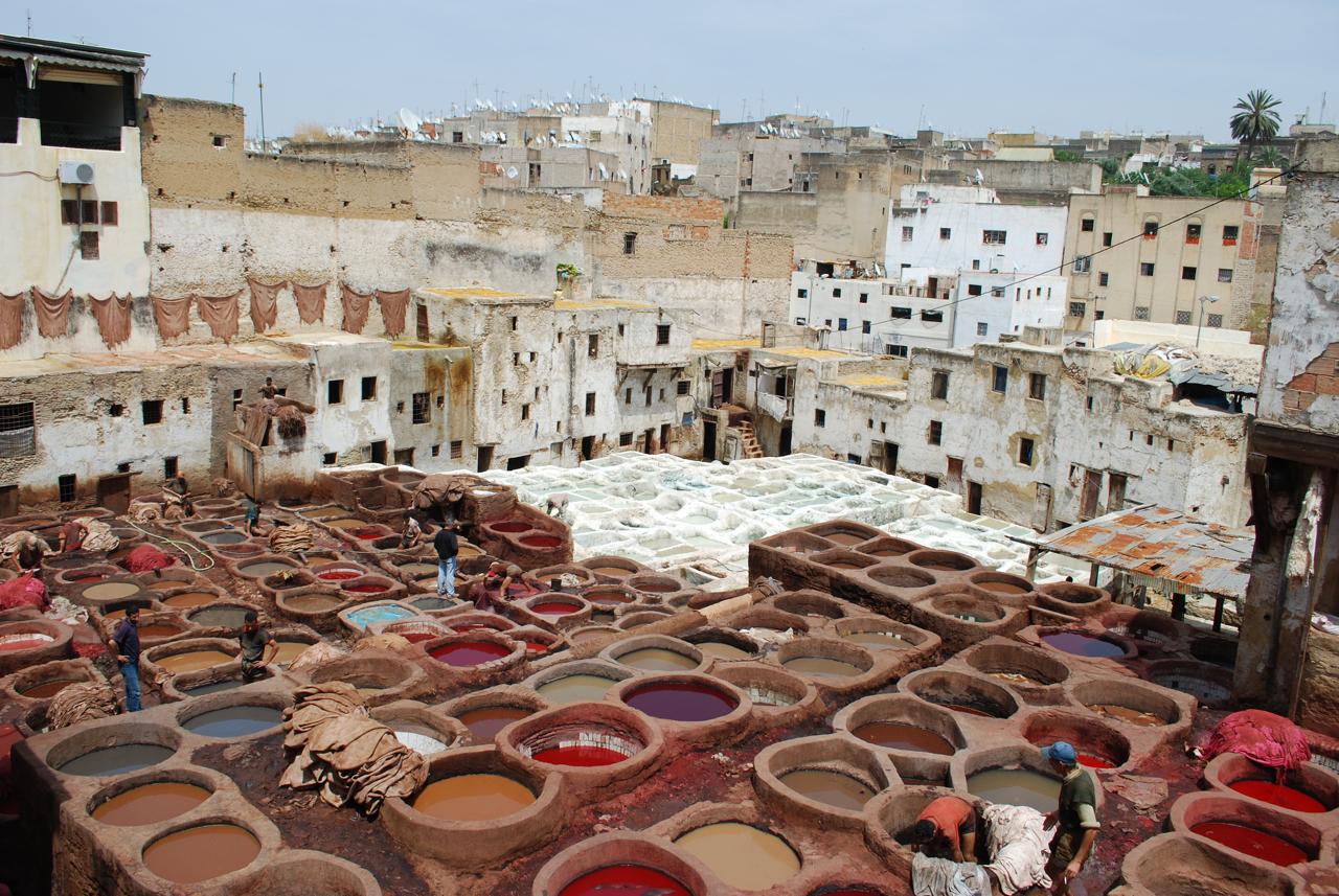 Salon du cuir autruches et chameaux le maroc aura votre for Salon du batiment casablanca