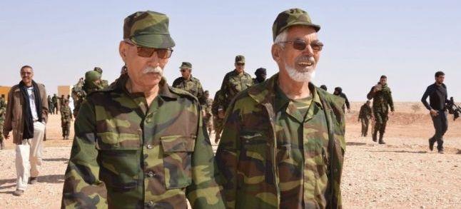 مصطفى سلمى يكتب: هل تمثل جبهة البوليساريو الصحراويين؟