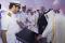 افتتاح ميناء حمد يؤكد وجود تقارب مغربي قطري