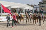 JO 2020 de Tokyo : Le Maroc qualifié en compétitions de dressage et de saut d'obstacles