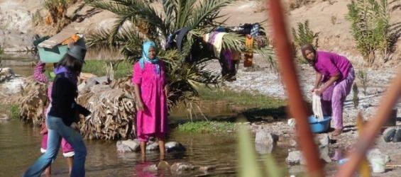Les oasis du Maroc menacées, quel rôle pour la femme oasienne ?