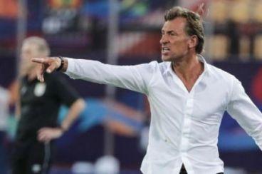 Hervé Renard becomes Saudi Arabia's new manager