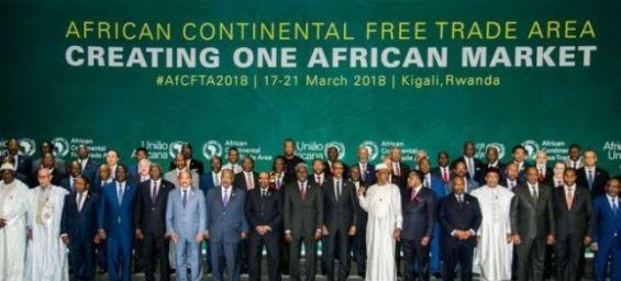 UA : A trois semaines du sommet du Niger, le Parlement marocain examine le projet de la ZLECAF