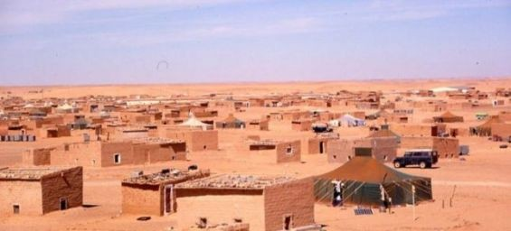 A Wall Street Journal article on the Sahara upsets the Polisario