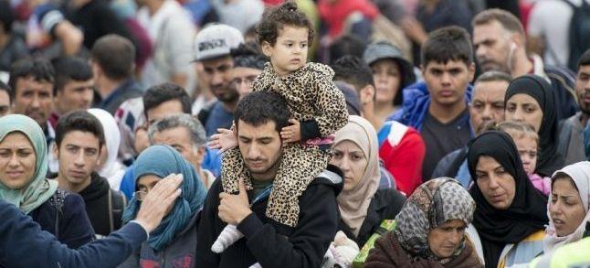 Migrations et terrorisme : Les liaisons dangereuses [Tribune]