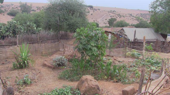 Les potagers du village souffrent de sécheresse. / Ph. Mounira Lourhzal