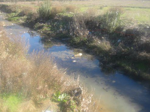 Maroc : Un bras de l'Oued Laou pollué par les huiles de vidange d'une station Afriquia