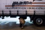 Ceuta : Un mineur marocain trouve la mort après avoir été heurté par un camion