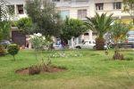 Maroc : Les Casablancais alertent sur des projets visant leurs espaces verts
