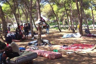 Survivre sous les arbres au cœur de Rabat : La situation des migrants refoulés au Maroc