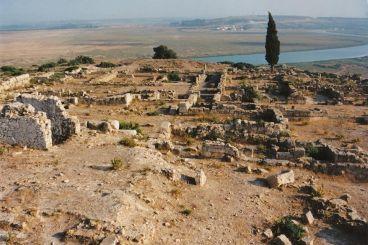 Nomad #25 : Lixus, berceau archéologique de la ville de Larache