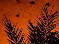 Les remparts de Marrakech de nuit alt=