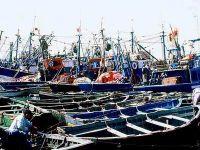 Les bateaux de pêche alt=