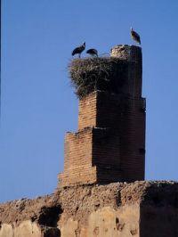 Palais al Badiaa alt=