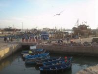 Le port de pêche alt=