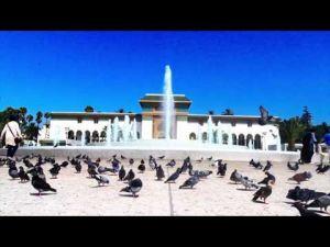 في قلب مدينة الدار البيضاء