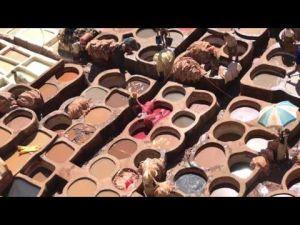 Nomad #37 : A Fès, la tannerie Chouara attire les touristes du monde entier