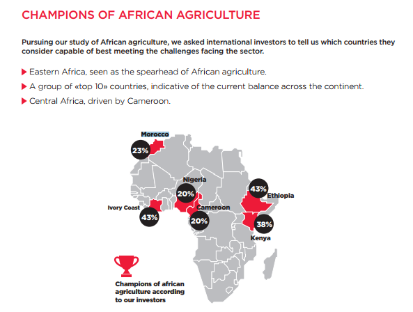 Agriculture : Morocco among the top five most fertile African lands