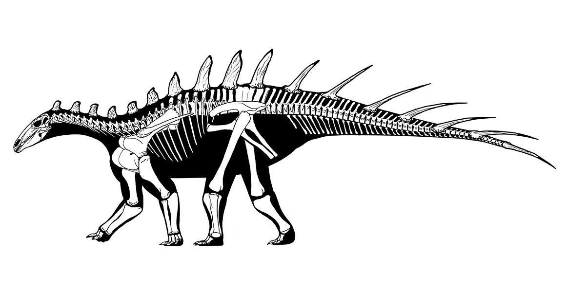 Dating dinosaura wiki